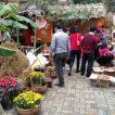Kế hoạch tổ chức Hội chợ Văn hóa ẩm thực – Dân gian Việt Nam – Chào mừng 35 năm ngày thành lập trường THPT Bỉm Sơn